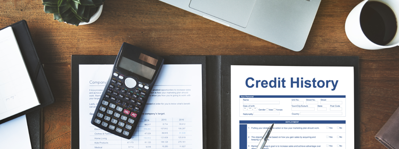 Credit history file on table